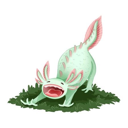 Cute Axolotl isolated image. Yawning triton image