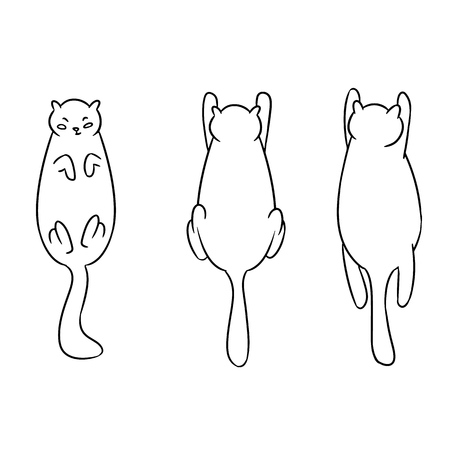Cute fat cat poses. Vector sketch doodle art