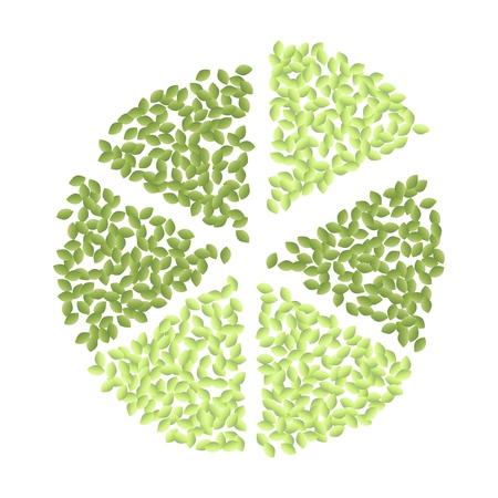 Green pizza diagram of green leaves circle ornament. Eco vegan isolated vector image Ilustracja