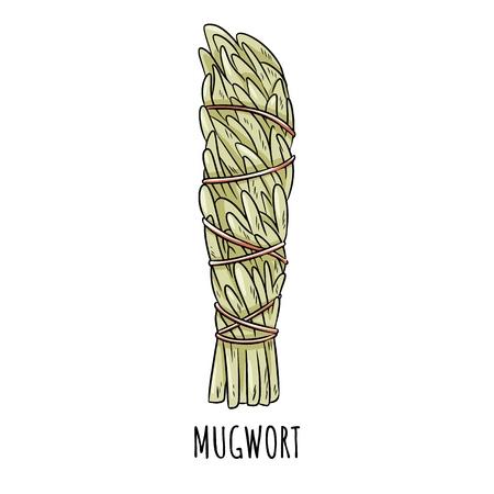 Illustration isolée d'un doodle dessiné à la main avec un bâton de sauge. Paquet d'herbes d'armoise