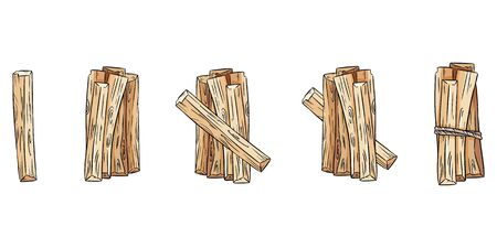 Set of wood sticks bundles. Collection of Palo Santo sticks from Latin America. Vector images isolated on white background