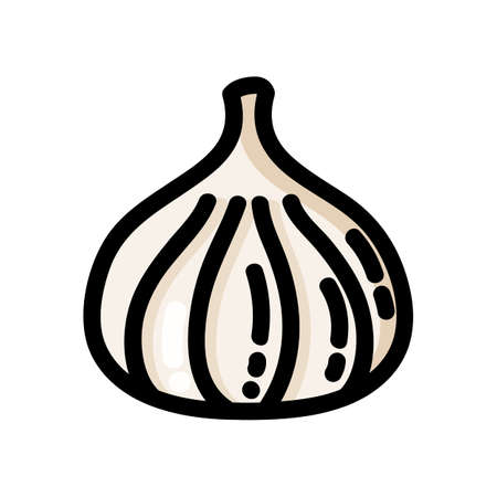 Garlic flat outlined icon. Vector vegetable logo isolated on white background. Vegan food symbol, media glyph