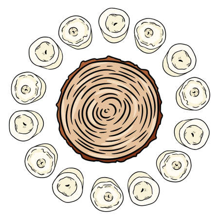 Cross section of tree stump in a circle of white candles. Wooden cut section hand drawn magic doodle. Wiccan altar setting. Hand drawn wicca image