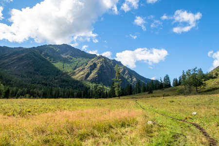 Mountain valley scenic view. Picturesque view to ravine, grassy meadows and hills. River gorge in Altai Mountains, Russia. Stock photography