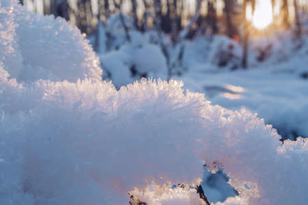 Crystal snow closeup. Snow in the sunset. Cold frosty day blurry background with snow in winter sun beams. Фото со стока