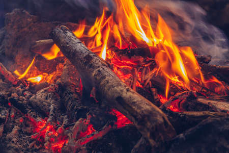 Camping fire cozy closeup view. Outdoor wildlife lifestyle. Woods burning in flames stock photo