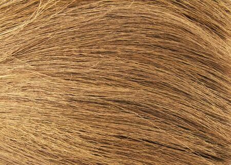 besom: Broom background Stock Photo