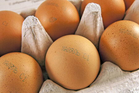 permissible: Fresh eggs with marking halal in russian. Food produced according to Muslim laws
