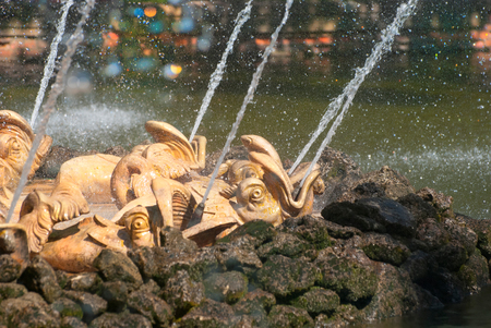 petergof: PETERHOF, SAINT-PETERSBURG, RUSSIA - JULY 22, 2014: Dolphins of the Sun Fountain in The Eastern Part of The Lower Park in The State Museum Preserve Peterhof.