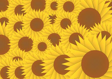 sun flower: Sun flower abstract background, VECTOR, EPS10