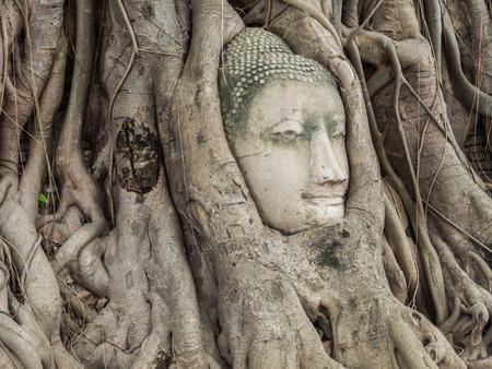 ayuttaya: Ancient Buddha Statue in tree roots at Mahatat Temple, Ayuttaya, Thailand
