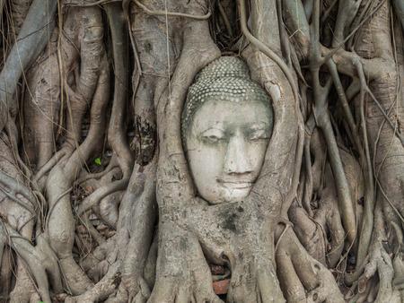 Ancient Buddha Statue in tree roots at Mahatat Temple, Ayuttaya, Thailand photo