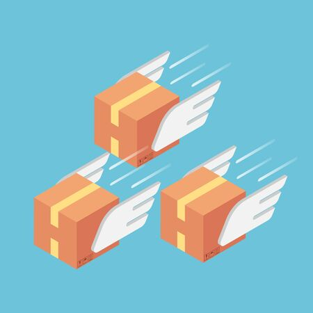 Flat 3d isometric parcels with wings flying forward rapidly. Fast delivery services and air transport concept. Stock Illustratie