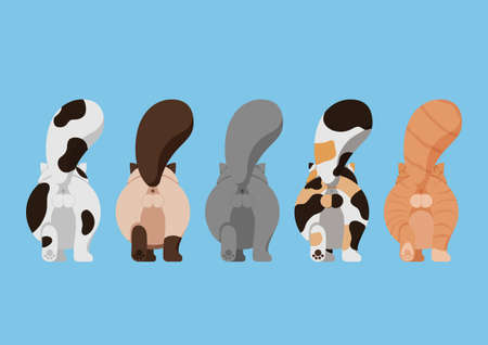 Set of Variety Cute Cat Butt Cartoon Character Design