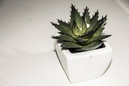 decorative item: Stone roses decorative item for living room