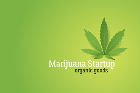 Marijuana startup conceptual illustration. Realistic cannabis leaf on green background.