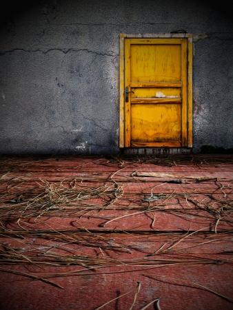 The Door Stock Photo - 16777556
