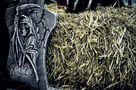 skeleton stone in the hayloft photo