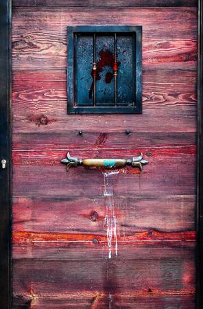 Wooden and Iron Ancient Door photo