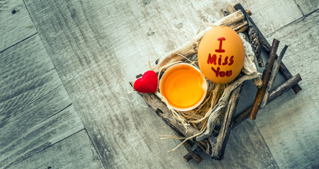 i miss you: TheEgg and I miss You Word on Egg Stock Photo