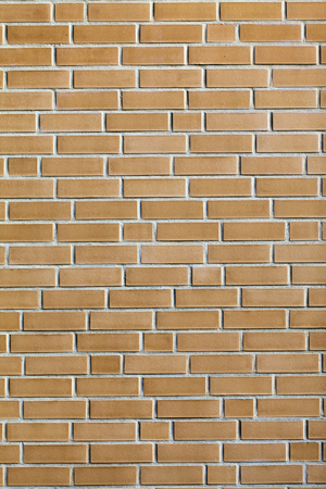 solid: Stone Brick Wall Background