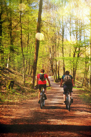 Beautiful Forest and Sunlight and Riding Bike Photo