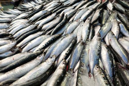 Comida de pescado crudo en un puesto de mercado de pescado