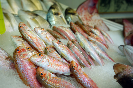 Raw Fish Food in a Fish Market Stand Stock Photo