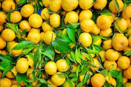 Fresh Juicy Fruit Mandarin for Sale in Bazaar