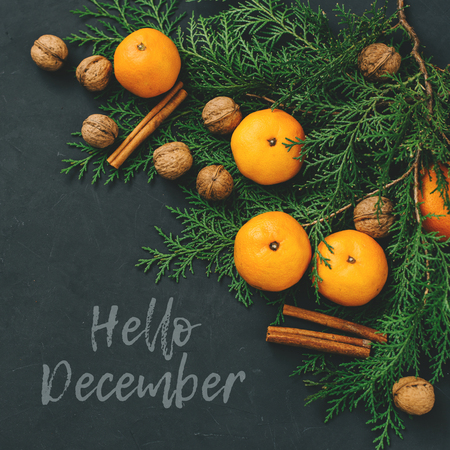 post card: Toned post card Hello December christmas composition tangerines, nuts, cinnamon sticks and natural cypress branches on bark background Stock Photo