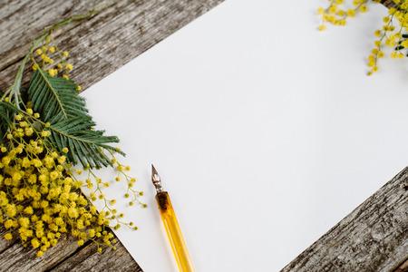 Libro bianco si imita con fiori gialli mimosas e inchiostro vintage penna su sfondo grigio di legno