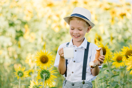 sunflower seeds: Adorable blond toddler boy funny eating bagel and drinking milk on summer sunflower field outdoors
