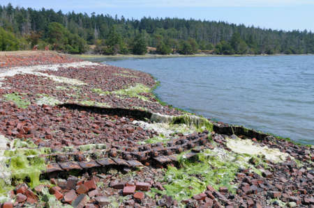 Old bricks left behind by the Sidney Tile and Brick Company, Sidney Spit, Gulf Islands National Park Reserve of Canada, British Columbia, Canada