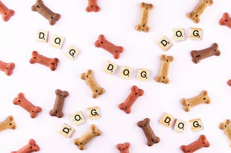 Dog food pattern made with dry snacks in shape of bones. Word dog in wooden tiles. Funny flat lay texture. Home pets, animals feeding. Special diet, training supply. Top view horizontal background.