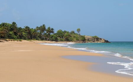 perle: Stunning landscape of La Perle sandy beach, in Guadeloupe island, Basse Terre, French territory.