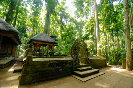 pura-balinese temple in the middle of forest