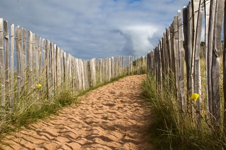 a sandy path with fence in dunes photo
