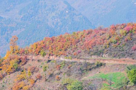 green ridge: Chencang district, Baoji city, Shaanxi Province Stock Photo