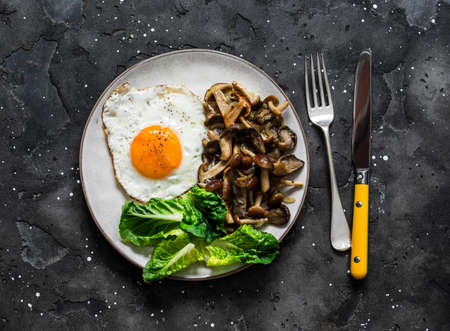 Healthy breakfast, brunch - fried egg with wild mushrooms and green salad on a dark background, top view 写真素材