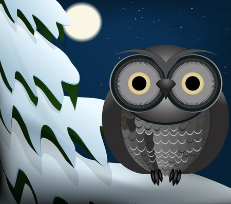 Owl sitting at night on snowed tree Vector