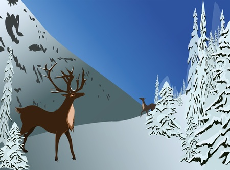 Lovely deers meeting, surrounded by beautiful snowy pine trees and mountain winter scenery  Winter scenery  Vector