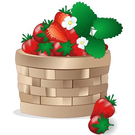 Wicker basket with strawberries Vector