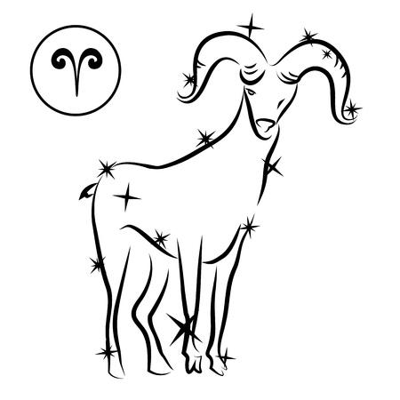Aries Illustration