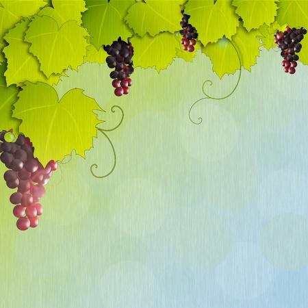 Grapevine with rainy texture