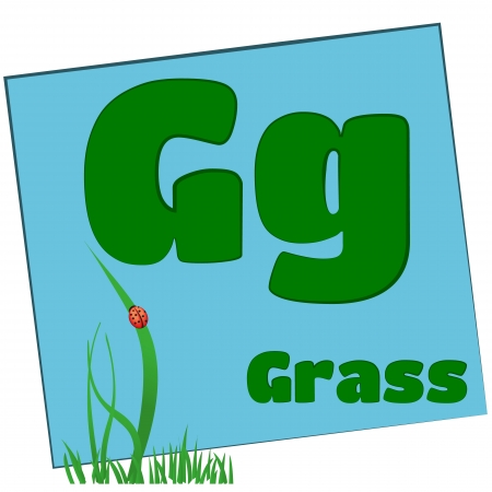 G-grass Colorful alphabet letters with words starting with each and their image Stock Photo - 14267672