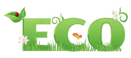 Eco signtextEco text decorated with,flowers,grass,water drops and ladybug Vector