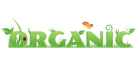 Organic textOrganic text decorated with flowers,grass,water drops, ladybug  and butterfly Vector