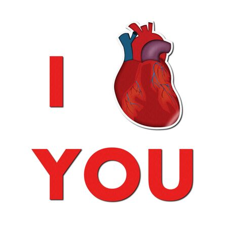 I love you/Text 'I love you' with illustration of real heart(sticker), suitable for medical or even geeky valentine's day use  illustration
