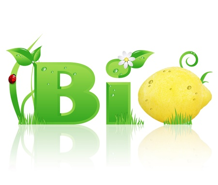 Word  Bio  ecological design, with floral elements and a lemon instead of letter  O   isolated  photo
