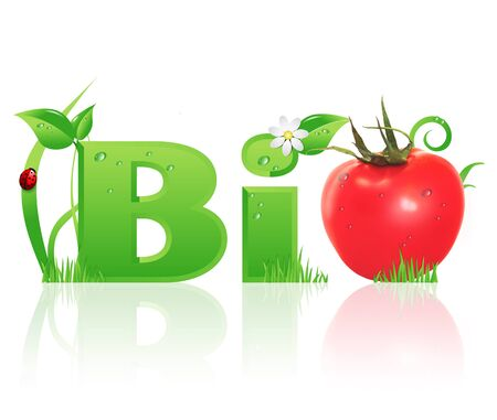 Word  Bio  ecological design, with floral elements and a red tomato instead of letter  O   isolated Stock Photo - 19468389